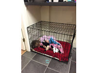 Pets at Home Dog Crate