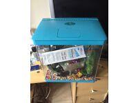 29 litre aquarium with gravel, heater, ornaments etc