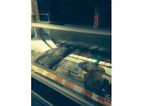 Gelato ice cream freezer