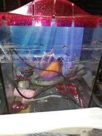 Pink glitter Fish Tank and pump