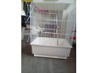 bird cage for £30