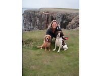 Dog Walking and Boarding Service Carterton