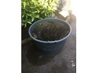 Extra Large Robust sturdy Plant Pots with drainage holes and handles. Few to choose from