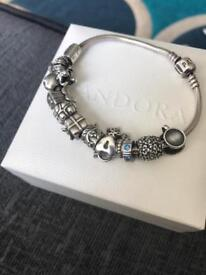 Genuine pandora bracelet with 12 genuine charms