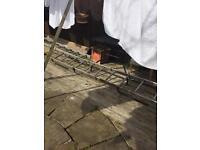 Roof ladder cat ladder