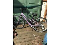 Apollo Haze Hybid ladies bike