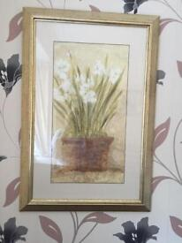 Framed floral picture scenes (two) from John Lewis