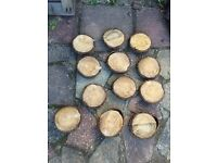 12 log slices perfect for wedding decoration, florists or a project