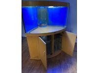 Juwel trigon 350 beech sump corner marine tropical cold fish tank aquarium (delivery installation)