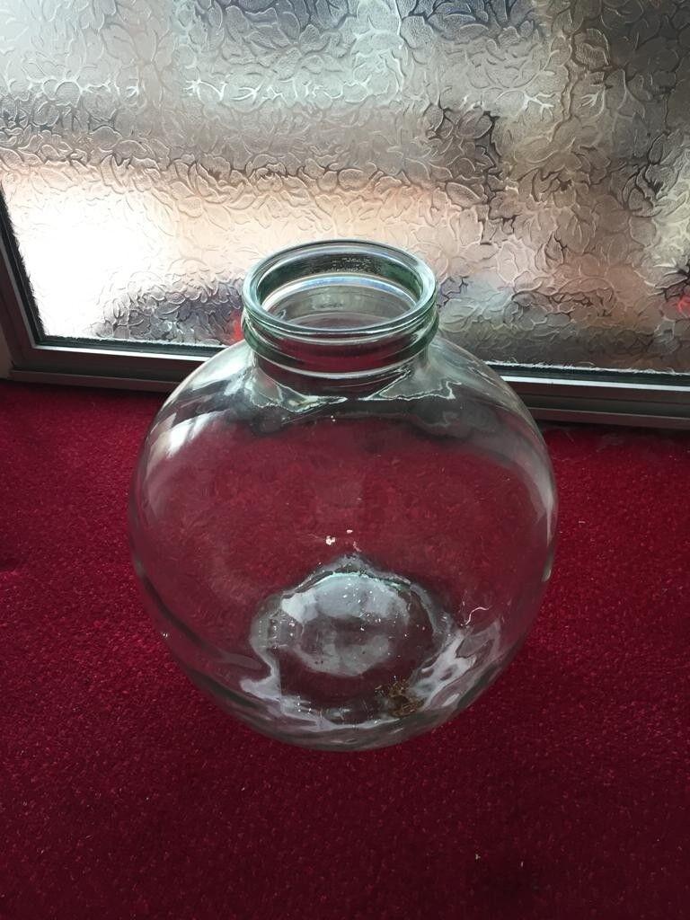Large Vintage Clear Glass Decorative Bottle Terrarium Garden