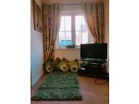 Curtains, Rug, Cushions with Curtain holder. (6 month old)