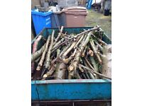 Logs - hard wood timber hardwood Cuttings of hard wood tree Collection only Ballymoney Area