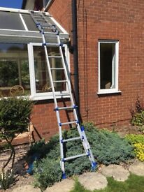 Bavaria Conservatory Ladders, RRP £499, VGC, 24kg, EN131 Patented Design Certified