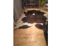 An extra large brown and white cow skin rug