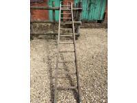 Roof ladder 3m