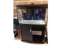 Aqua marine 900 fish tank 175l just tank stand lid only no light and light unit u can look pic