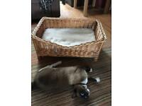 Wicker cat bed, S8
