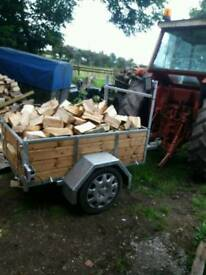 Trailer Of Firewood
