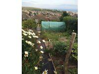 Co-worker sought for Brighton (Whitehawk) Allotment / Garden