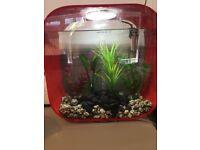 Biorb red 30L fish tank