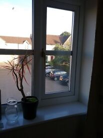 Bicester Double Room Available Now