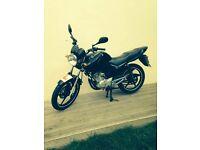 yamaha ybr 125 **full mot,ready to ride away**