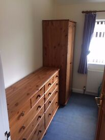 Single Room available in quiet shared house.