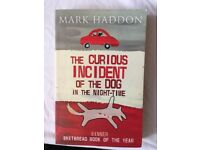 The Curious Incident of the Dog in the Night-Time (by Mark Haddon)