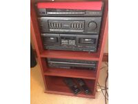 Sony entertainment system with wooden rack