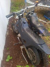 2 mini motorbikes