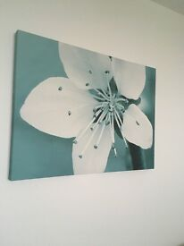 BARGAIN pretty teal canvas floral print picture from next