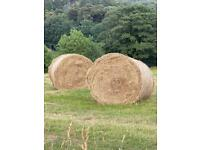 Hay old land meadow round bails