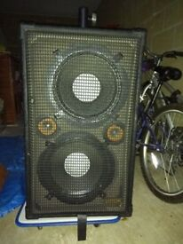 2 Large Passive Speakers & 2 Monitors (Bargain)!
