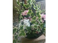 Hanging Basket (New) complete with artificial flowers