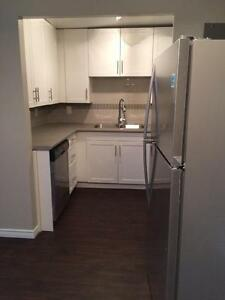 Free month on Remodeled and Upgraded 2 Bedrooms Suites! Kitchener / Waterloo Kitchener Area image 7