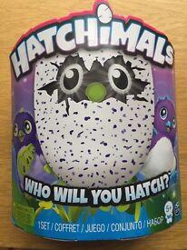 Hatchimal - Draggles Purple Egg