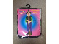 Halloween Witch Costume age 3-4 toddler