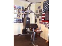 Pro Fitness muti gym and various weights