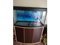 Fluval Vicenza 180. tank, cabinet, strip light canopy, Fluval 205 external filter and a heater