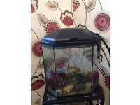 25 L Fish Tank