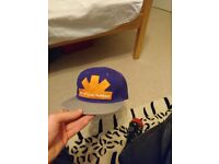 Red hot chili peppers purple snapback