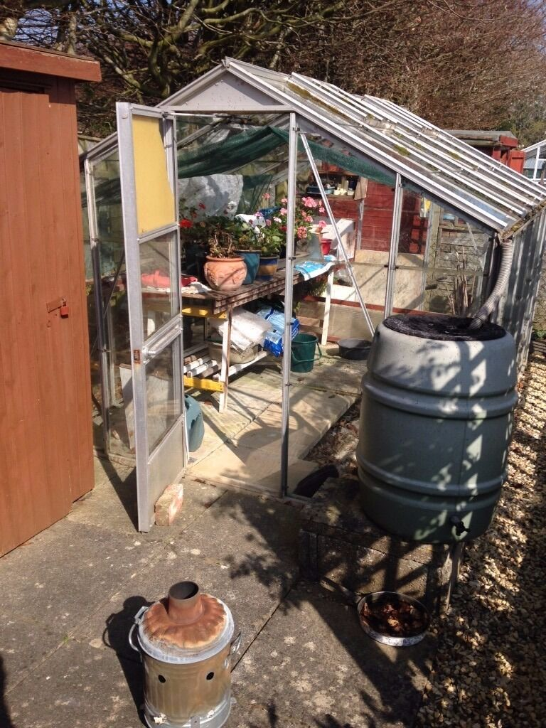 FREE Glass and Aluminium Greenhouse in Yeovil  : 86 from www.gumtree.com size 768 x 1024 jpeg 174kB