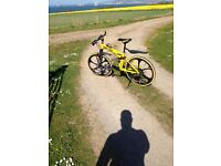 Excellent condition, mountain bike