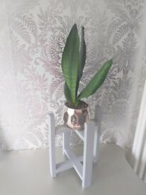 Wooden plant stand with plant