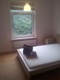 Good sized double room and ensuite double room in professional houseshare in Portswood