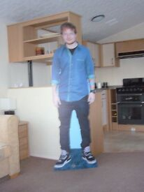 Excellent Unusual Xmas Gift ED SHEERAN - LIFE SIZE - Cardboard cut out