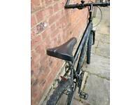 Raleigh _ Max _ Ogre-15 mountain bike