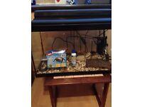 Fish tank 2ft x 15inch x 1ft