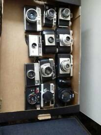 Collection of cameras for display