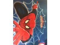 Spider-Man Car seat/ bumper seat,